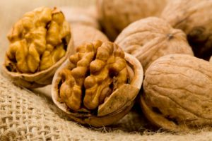 walnut Supplier / Export walnut